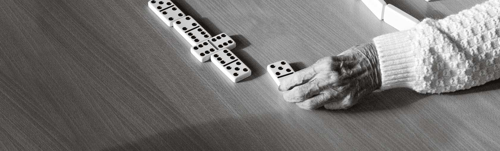WMH-HC-ONE-DOMINOES-WEB image